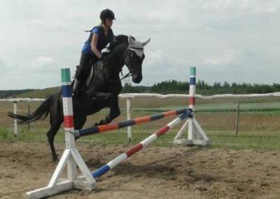 oboz-konie-2015-3-0131