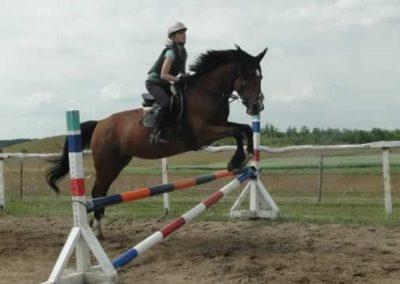 oboz-konie-2015-3-0134