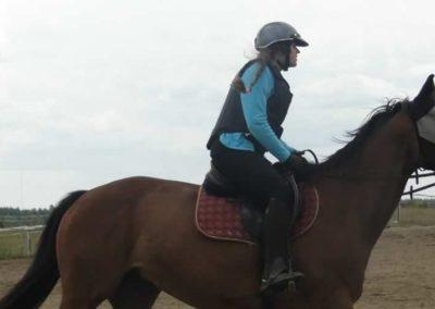 oboz-konie-2015-3-0144