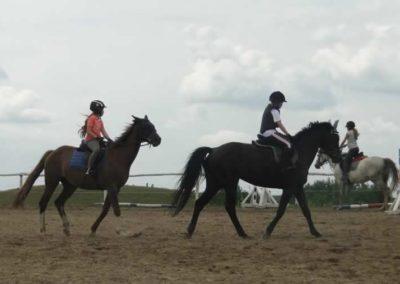oboz-konie-2015-3-0152