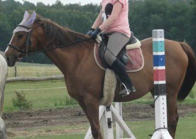 oboz-konie-2015-3-0153