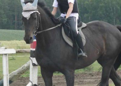 oboz-konie-2015-3-0155