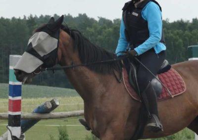 oboz-konie-2015-3-0156
