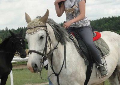 oboz-konie-2015-3-0158