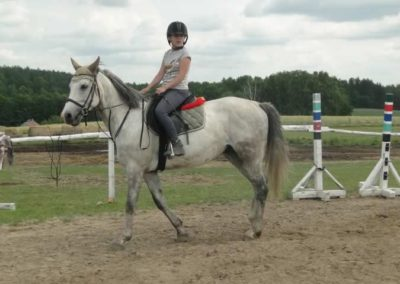 oboz-konie-2015-3-0161