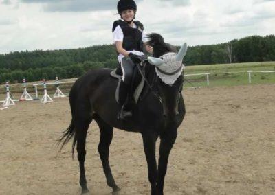 oboz-konie-2015-3-0165