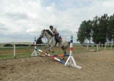 oboz-konie-2015-3-0167
