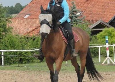 oboz-konie-2015-3-0168