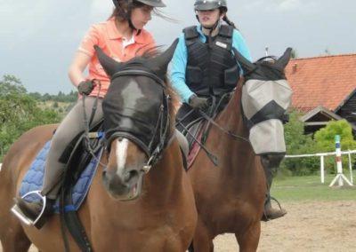 oboz-konie-2015-3-0169
