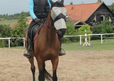 oboz-konie-2015-3-0170