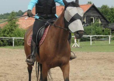 oboz-konie-2015-3-0172
