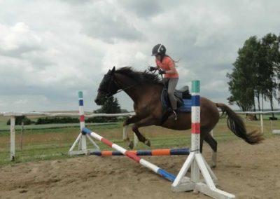 oboz-konie-2015-3-0177