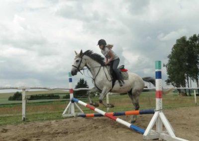 oboz-konie-2015-3-0179