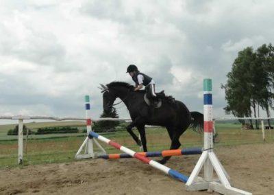 oboz-konie-2015-3-0180