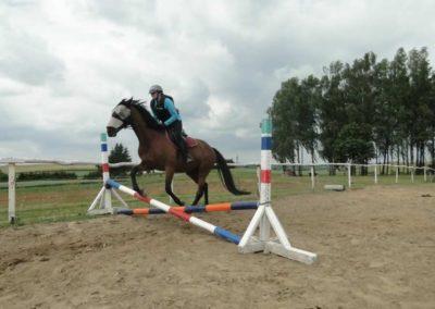oboz-konie-2015-3-0181