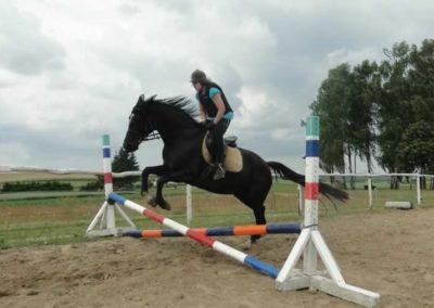 oboz-konie-2015-3-0182