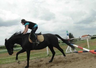oboz-konie-2015-3-0183