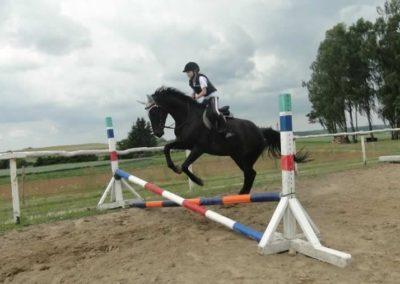 oboz-konie-2015-3-0184