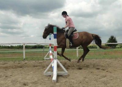 oboz-konie-2015-3-0188
