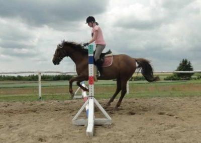 oboz-konie-2015-3-0189