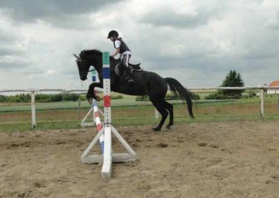oboz-konie-2015-3-0190