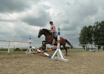 oboz-konie-2015-3-0191