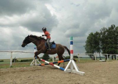 oboz-konie-2015-3-0192