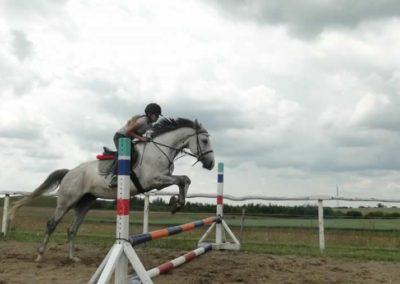 oboz-konie-2015-3-0194
