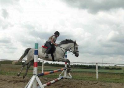 oboz-konie-2015-3-0195