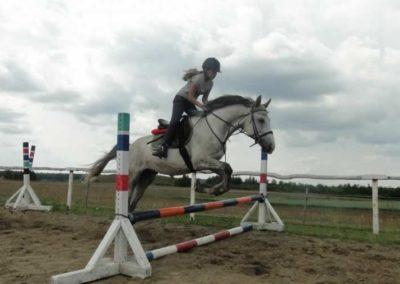 oboz-konie-2015-3-0199