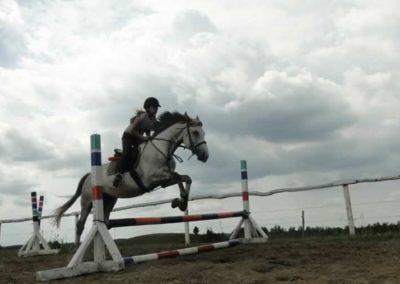 oboz-konie-2015-3-0201