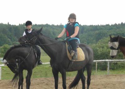 oboz-konie-2015-3-0203