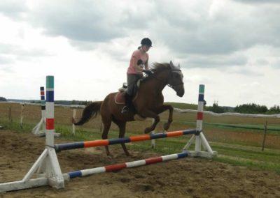 oboz-konie-2015-3-0206