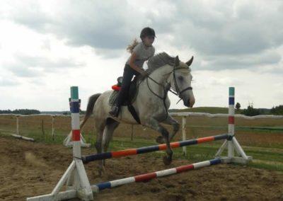 oboz-konie-2015-3-0207