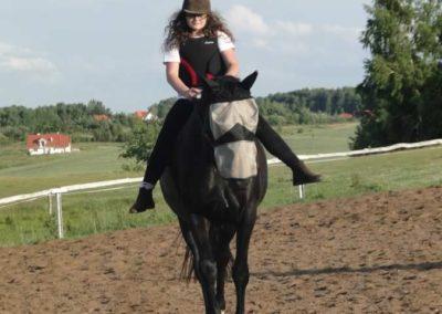 oboz-konie-2015-3-0217