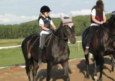 oboz-konie-2015-3-0230