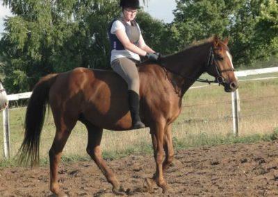 oboz-konie-2015-3-0234