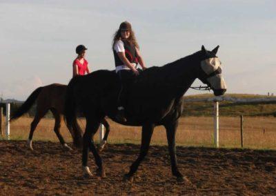oboz-konie-2015-3-0240