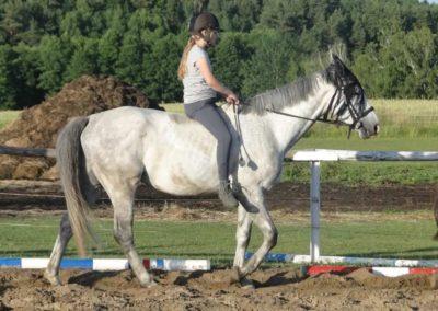 oboz-konie-2015-3-0243
