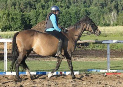 oboz-konie-2015-3-0245