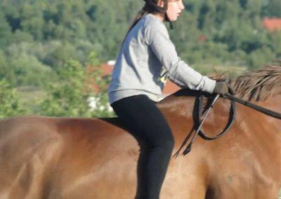 oboz-konie-2015-3-0247