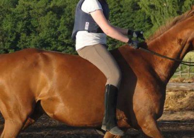 oboz-konie-2015-3-0248