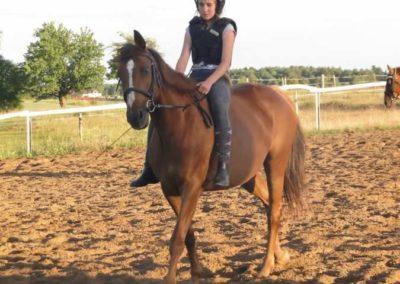 oboz-konie-2015-3-0252