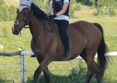 oboz-konie-2015-3-0256