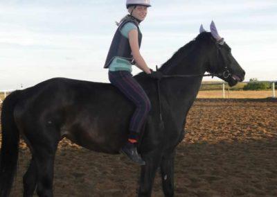 oboz-konie-2015-3-0257