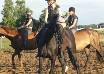 oboz-konie-2015-3-0258