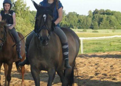 oboz-konie-2015-3-0259
