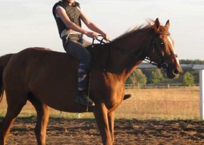 oboz-konie-2015-3-0266