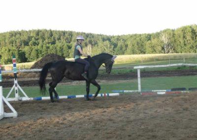 oboz-konie-2015-3-0267