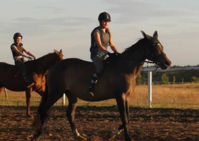 oboz-konie-2015-3-0269